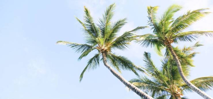 Seguro-Medico-en-Florida-Playa-e1563297380501.jpg